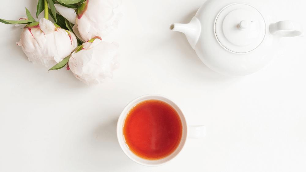 お茶をしながら質問